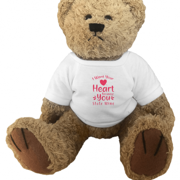Teddy Bear I Want Your Heart Because You Stole Mine